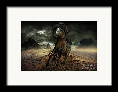 Dun Horse Framed Prints