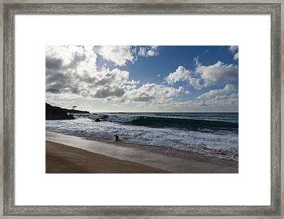 Run The Big Kahuna Is Coming - Waimea Bay Beach Fun On Oahu Hawaii Framed Print by Georgia Mizuleva