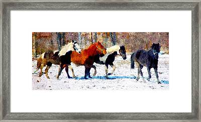 Run Through Winter Framed Print