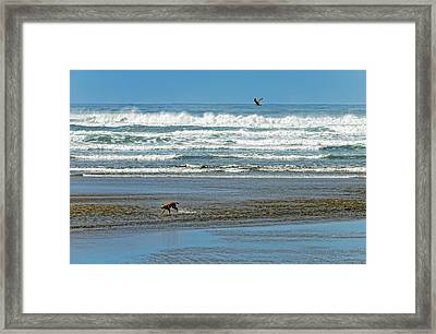 Run With Me Framed Print