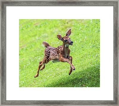 Running And Jumping Framed Print