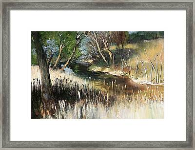 Running Cool Framed Print by Shirley  Peters