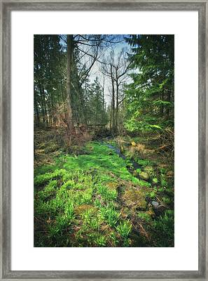 Running Creek In Woods - Spring At Retzer Nature Center Framed Print by Jennifer Rondinelli Reilly - Fine Art Photography