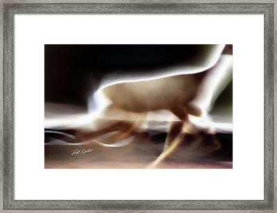 Running Doe Framed Print