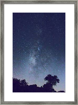 Running Dog Tree And Galaxy Framed Print