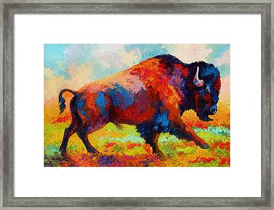 Running Free - Bison Framed Print