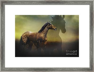 Running Free Framed Print