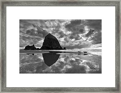Running Free Framed Print by Jamie Pham