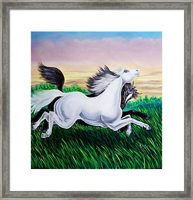 Running Free Framed Print by Kathern Welsh
