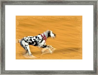 Running In The Dog Park Framed Print by Kae Cheatham