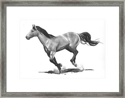 Running Stallion Framed Print by Joyce Geleynse