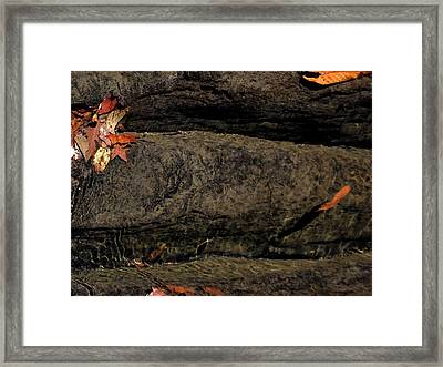 Running Water At Richland Creek Framed Print by Steve Grisham