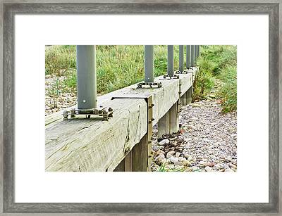 Runway Lights Framed Print by Tom Gowanlock