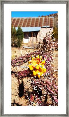 Rural Attitude Framed Print by James Granberry