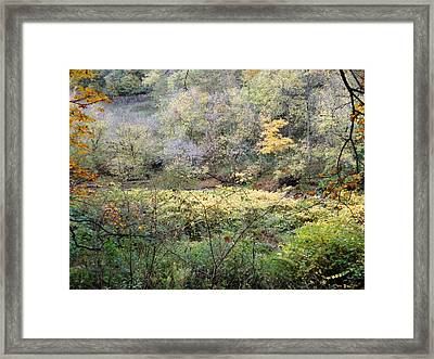 Rural Autumn West Virginia Landscape Framed Print by Terry  Wiley