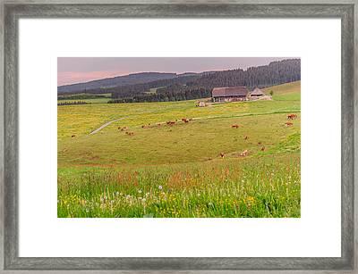 Rural Black Forest Landscape Framed Print by Shuwen Wu
