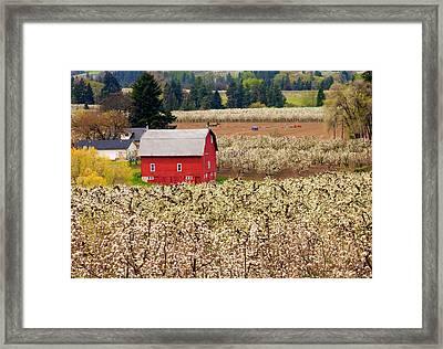 Rural Color Framed Print