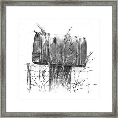 Rural Country Mailbox Framed Print