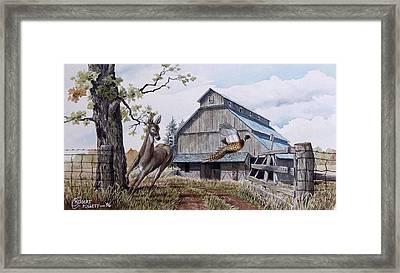 Rural Flush Framed Print