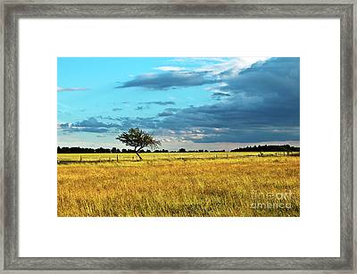 Rural Idyll Poetry Framed Print