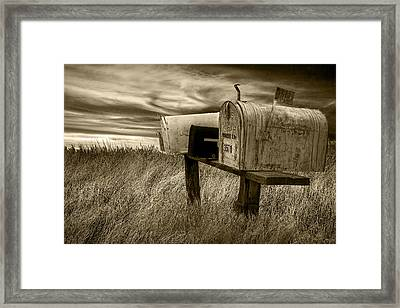 Rural Mailboxes In Sepia Framed Print