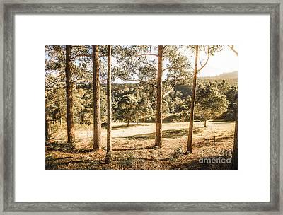 Rural Paddock In Australian Countryside Framed Print