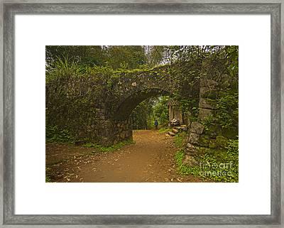 Rural Scene Framed Print by PuiYuen Ng