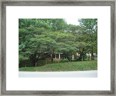 Rural Scenery 2 Framed Print