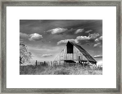 Rural Framed Print