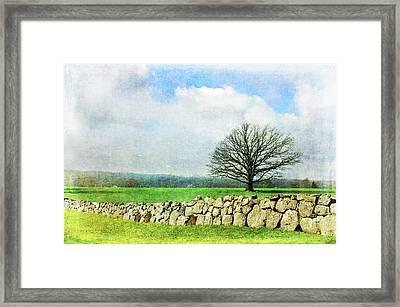 Rural Tranquility Framed Print by Randi Grace Nilsberg