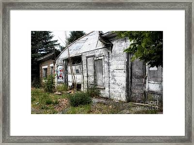 Rural Trump Framed Print by Steven Digman