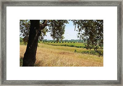Framed Print featuring the photograph Rural Tuscany by Valentino Visentini