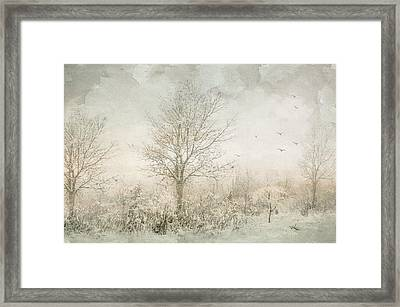 Rural Winter Landscape Framed Print by Julie Palencia