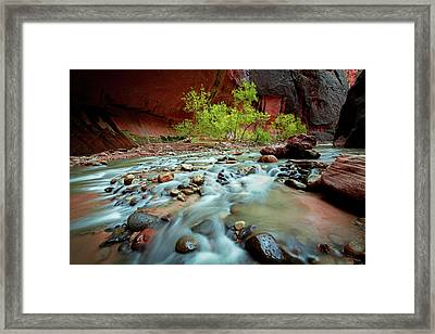 Rush At Narrows Framed Print by Edgars Erglis