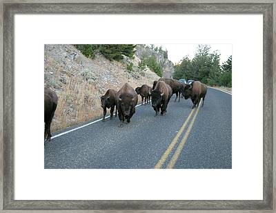 Rush Hour Framed Print by Michael Peychich