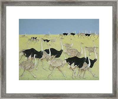 Rush Hour Framed Print by Pat Scott