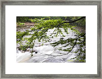 Rushing River Framed Print by Thomas R Fletcher