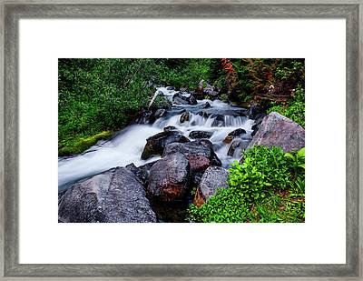 Rushing Stream In Mt Rainier National Park Framed Print by Vishwanath Bhat