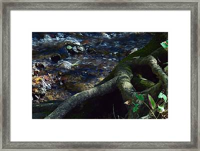 Framed Print featuring the photograph Rushing Waters Of Life by Wanda Brandon