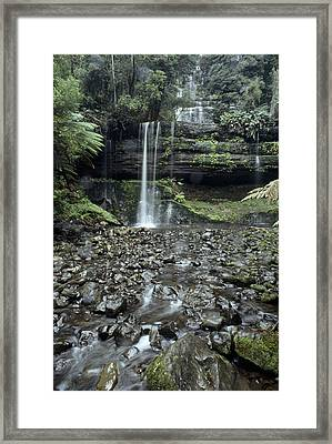 Russell Falls Cascade Through A Cool Framed Print by Jason Edwards