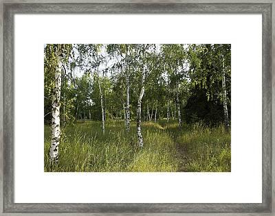 Russia Framed Print by Svetlana Sewell