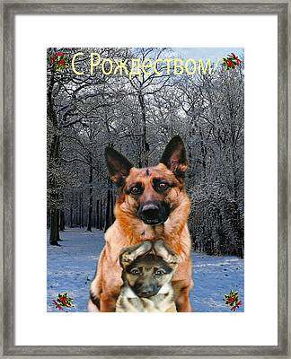Russian Holiday German Shepherd And Puppy Framed Print