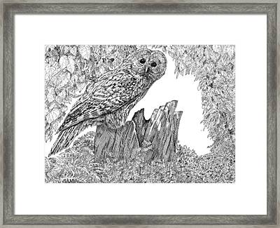 Russian Owl Framed Print by Leonie Bell