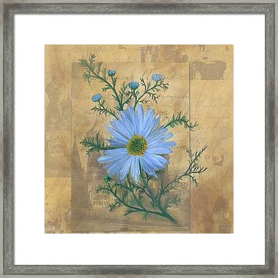 Russias Chamomile Framed Print by Carrie Jackson