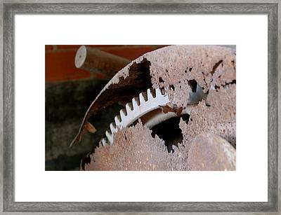 Rust 3 Framed Print by Tess Haun