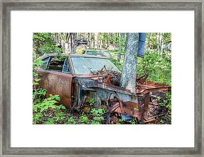 Rust Away Framed Print by Menachem Ganon