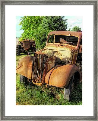 Rust Buddies Framed Print