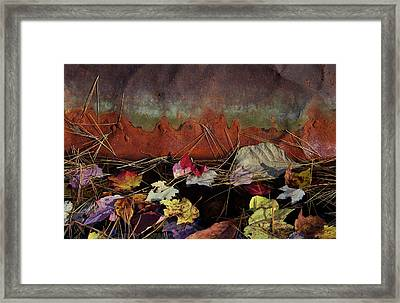 Rust Framed Print by Jerry LoFaro