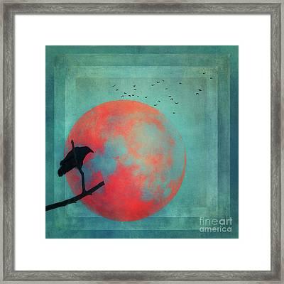 Rust Moon Framed Print