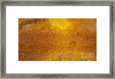 Rust Framed Print by Tim Gainey